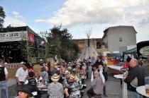 Countryfest in Bad Blankenburg_5